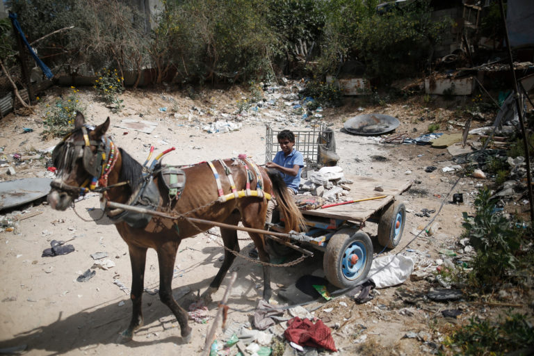 Børnearbejde-fattigfom-palæstina
