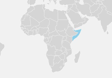 Somalia er et afrikansk land beliggende på Afrikas Horn, kontinentets østligste punkt. Landet grænser op til Kenya, Djibouti og Etiopien.