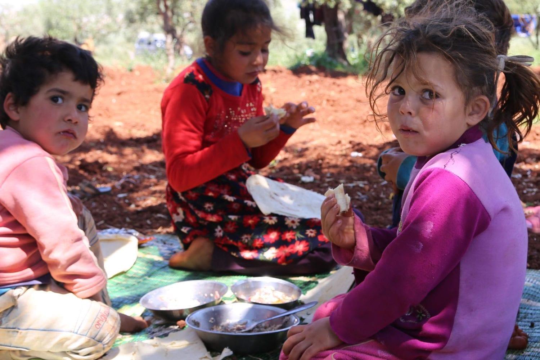 Familier på flugt fra fjendtlighederne i Idlib søger tilflugt i en olivenplantage.